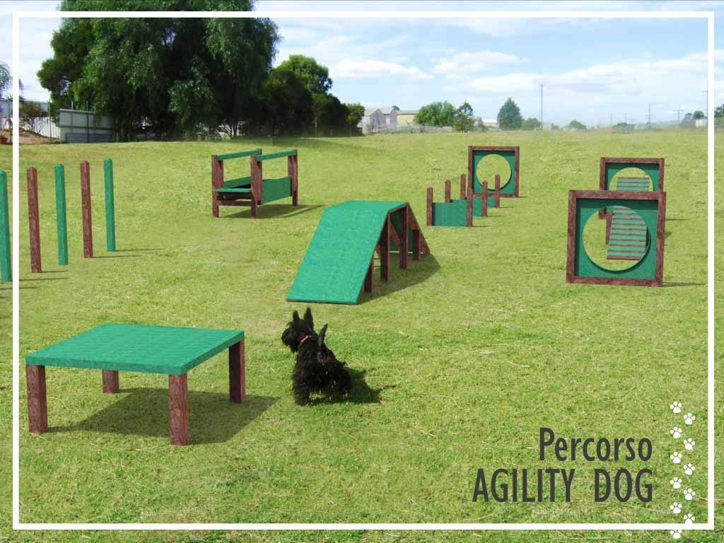 Agility Dog Saliscendi in STRONGPLAST - plastica riciclata post consumo